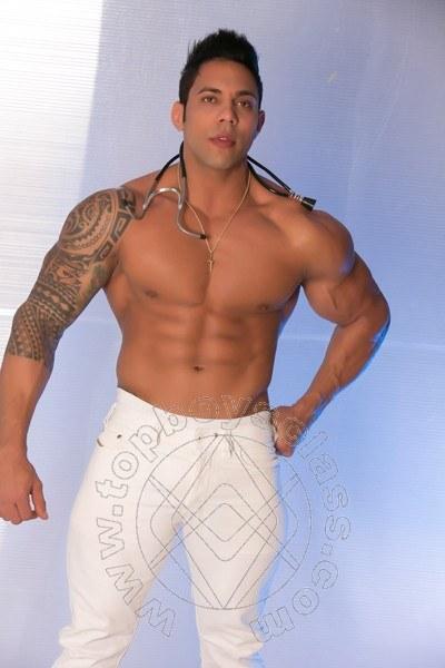 Pedro Carioca  ODERZO 3664118839